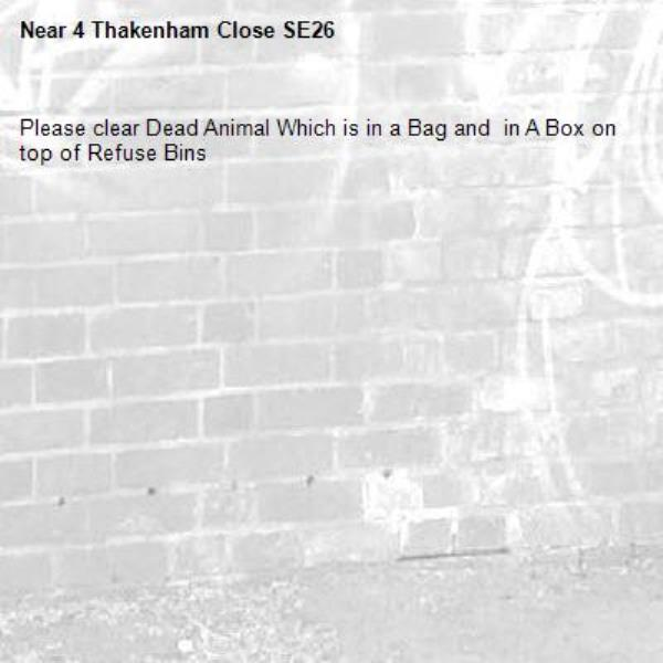 Please clear Dead Animal Which is in a Bag and  in A Box on top of Refuse Bins-4 Thakenham Close SE26