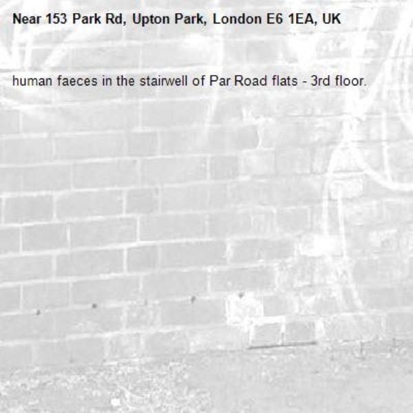 human faeces in the stairwell of Par Road flats - 3rd floor. -153 Park Rd, Upton Park, London E6 1EA, UK