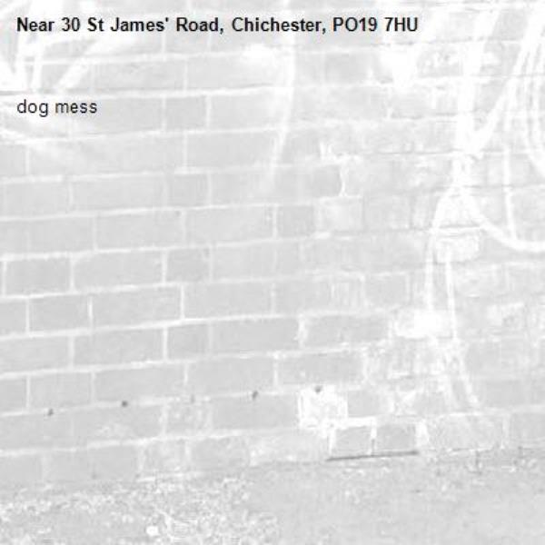 dog mess -30 St James' Road, Chichester, PO19 7HU