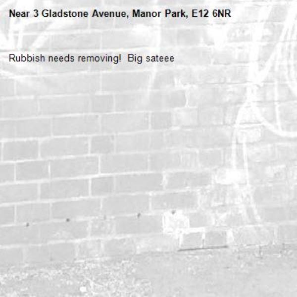 Rubbish needs removing!  Big sateee-3 Gladstone Avenue, Manor Park, E12 6NR