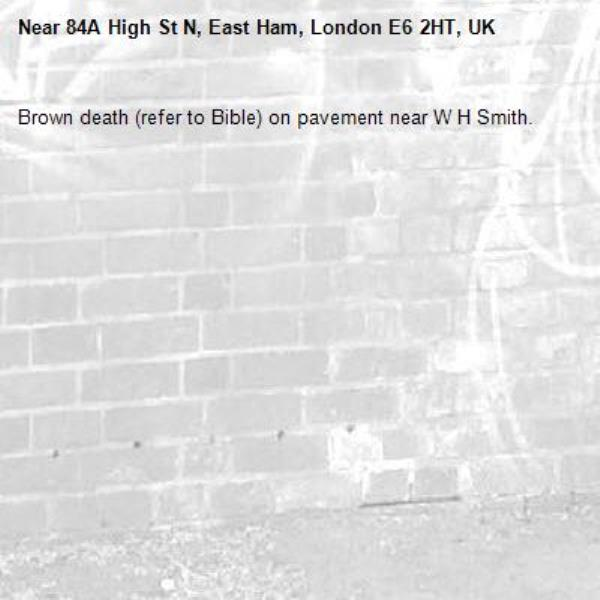 Brown death (refer to Bible) on pavement near W H Smith.-84A High St N, East Ham, London E6 2HT, UK