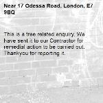 This is a tree related enquiry. We have sent it to our Contractor for remedial action to be carried out. Thankyou for reporting it.-17 Odessa Road, London, E7 9BQ