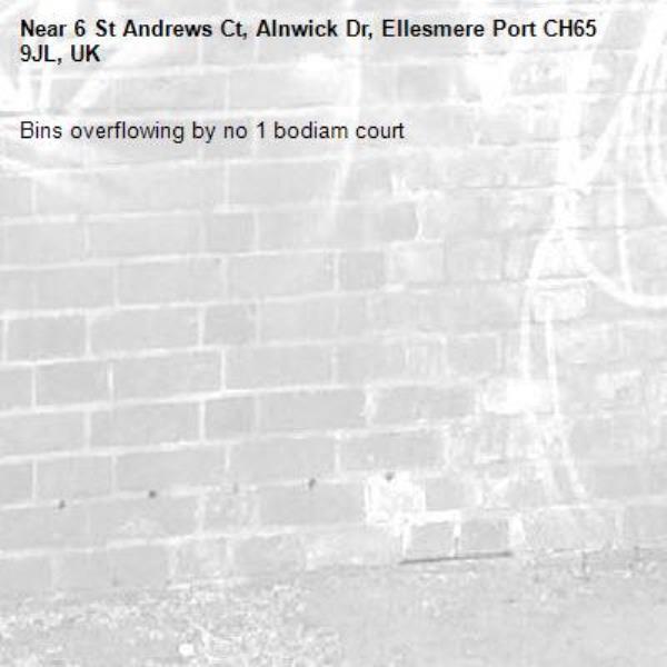 Bins overflowing by no 1 bodiam court -6 St Andrews Ct, Alnwick Dr, Ellesmere Port CH65 9JL, UK