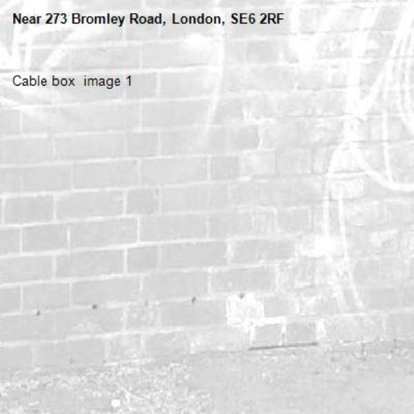 Cable box  image 1-273 Bromley Road, London, SE6 2RF
