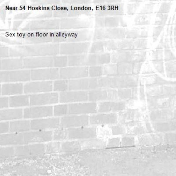 Sex toy on floor in alleyway-54 Hoskins Close, London, E16 3RH