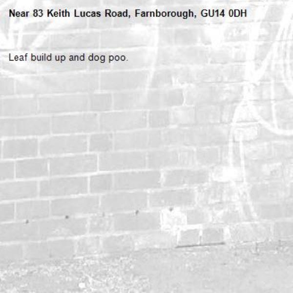 Leaf build up and dog poo.-83 Keith Lucas Road, Farnborough, GU14 0DH