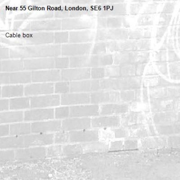 Cable box -55 Gilton Road, London, SE6 1PJ