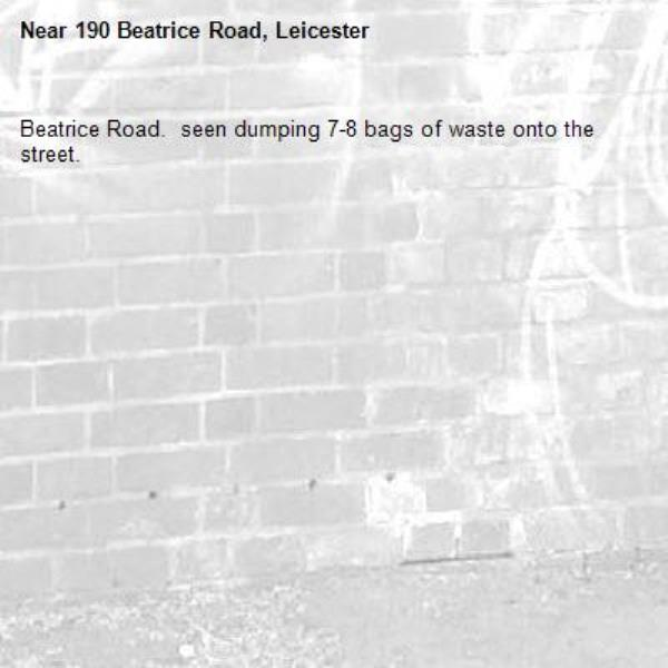 190 Beatrice Road. West Indian man seen dumping 7-8 bags of waste onto the street. ILLEGAL FLYTIPPING!!!!!-190 Beatrice Road, Leicester