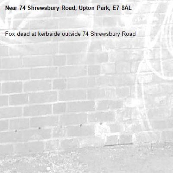Fox dead at kerbside outside 74 Shrewsbury Road -74 Shrewsbury Road, Upton Park, E7 8AL