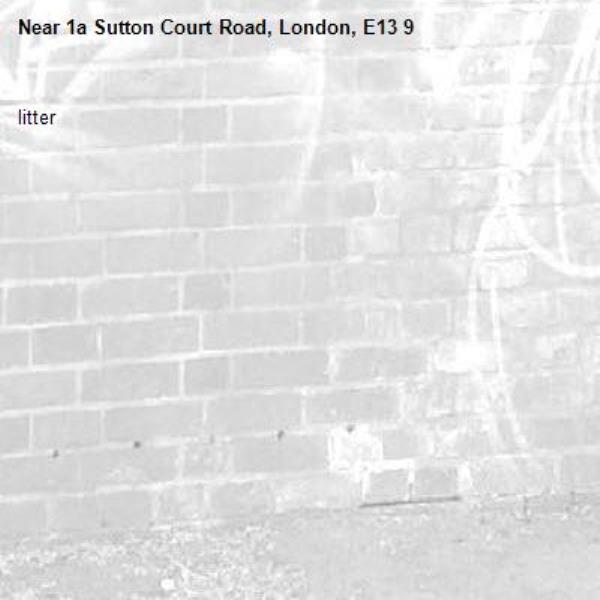 litter-1a Sutton Court Road, London, E13 9