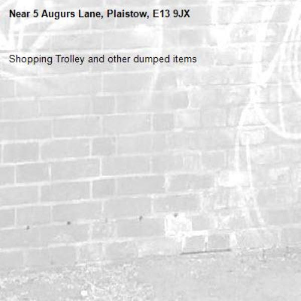 Shopping Trolley and other dumped items -5 Augurs Lane, Plaistow, E13 9JX