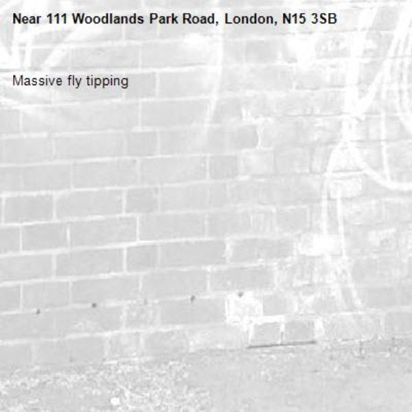 Massive fly tipping -111 Woodlands Park Road, London, N15 3SB