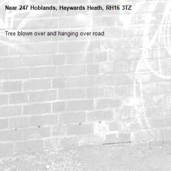 Tree blown over and hanging over road-247 Hoblands, Haywards Heath, RH16 3TZ
