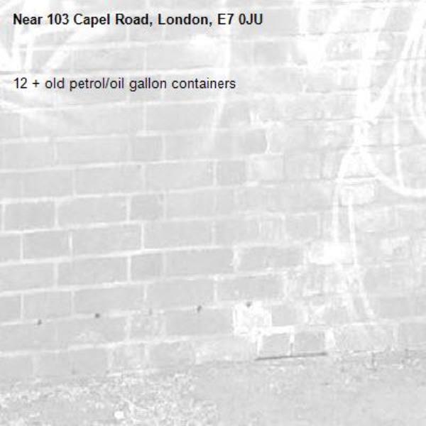 12 + old petrol/oil gallon containers -103 Capel Road, London, E7 0JU