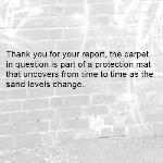 Thank you for your report, the carpet in question is part of a protection mat that uncovers from time to time as the sand levels change.-