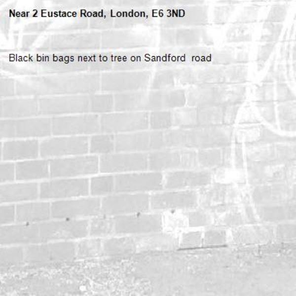 Black bin bags next to tree on Sandford  road-2 Eustace Road, London, E6 3ND