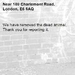 We have removed the dead animal. Thank you for reporting it.-180 Charlemont Road, London, E6 6AQ