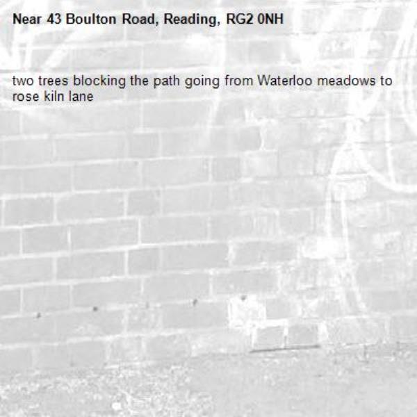 two trees blocking the path going from Waterloo meadows to rose kiln lane-43 Boulton Road, Reading, RG2 0NH