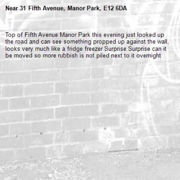 Top of Fifth Avenue Manor Park this evening just looked up the road and can see something propped up against the wall, looks very much like a fridge freezer Surprise Surprise can it be moved so more rubbish is not piled next to it overnight -31 Fifth Avenue, Manor Park, E12 6DA