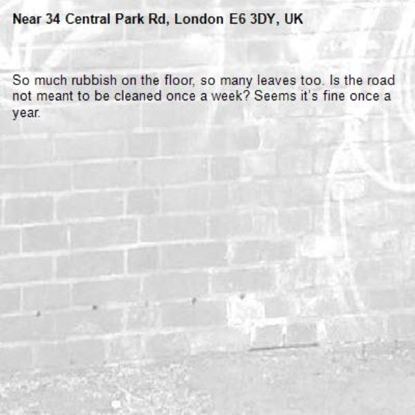 So much rubbish on the floor, so many leaves too. Is the road not meant to be cleaned once a week? Seems it's fine once a year. -34 Central Park Rd, London E6 3DY, UK