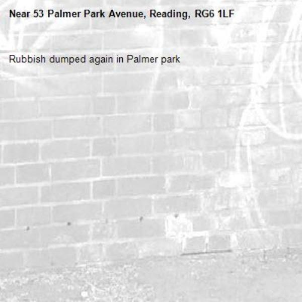 Rubbish dumped again in Palmer park-53 Palmer Park Avenue, Reading, RG6 1LF