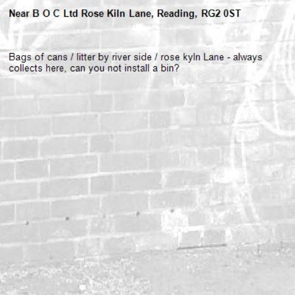 Bags of cans / litter by river side / rose kyln Lane - always collects here, can you not install a bin?-B O C Ltd Rose Kiln Lane, Reading, RG2 0ST
