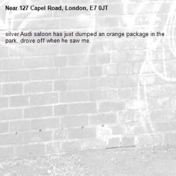silver Audi saloon has just dumped an orange package in the park. drove off when he saw me. -127 Capel Road, London, E7 0JT