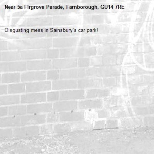 Disgusting mess in Sainsbury's car park!-5a Firgrove Parade, Farnborough, GU14 7RE