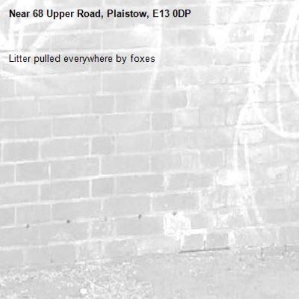 Litter pulled everywhere by foxes -68 Upper Road, Plaistow, E13 0DP