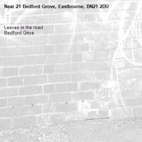 Leaves in the road Bedford Grive-21 Bedford Grove, Eastbourne, BN21 2DU