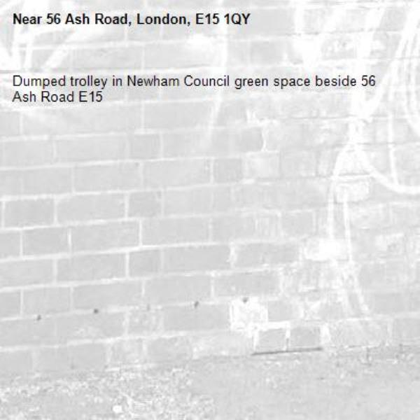 Dumped trolley in Newham Council green space beside 56 Ash Road E15-56 Ash Road, London, E15 1QY
