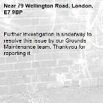 Further investigation is underway to resolve this issue by our Grounds Maintenance team. Thankyou for reporting it.-79 Wellington Road, London, E7 9BP