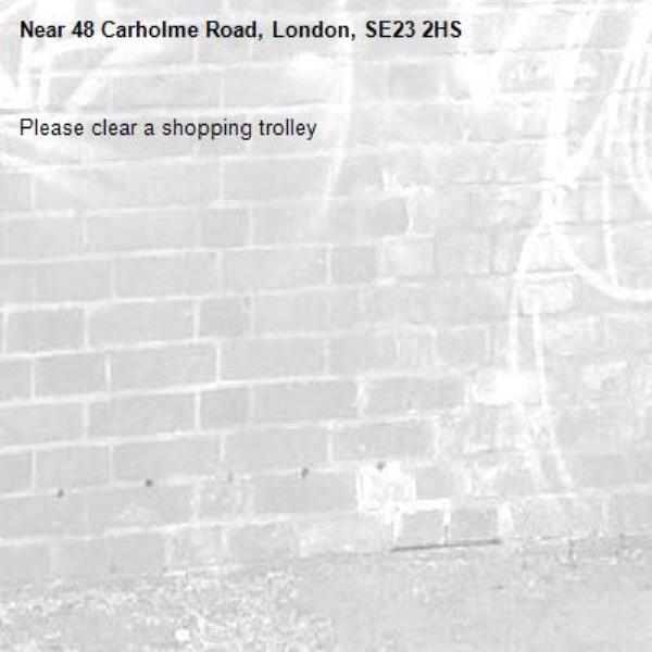 Please clear a shopping trolley-48 Carholme Road, London, SE23 2HS