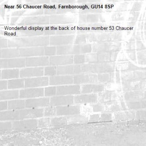 Wonderful display at the back of house number 53 Chaucer Road  -56 Chaucer Road, Farnborough, GU14 8SP