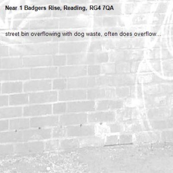 street bin overflowing with dog waste, often does overflow…-1 Badgers Rise, Reading, RG4 7QA