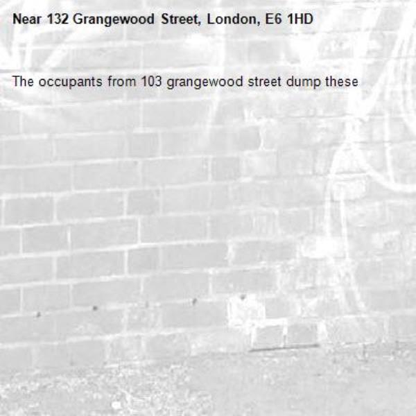 The occupants from 103 grangewood street dump these-132 Grangewood Street, London, E6 1HD