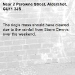 The dog's mess should have cleared due to the rainfall from Storm Dennis over the weekend. -2 Perowne Street, Aldershot, GU11 3JS