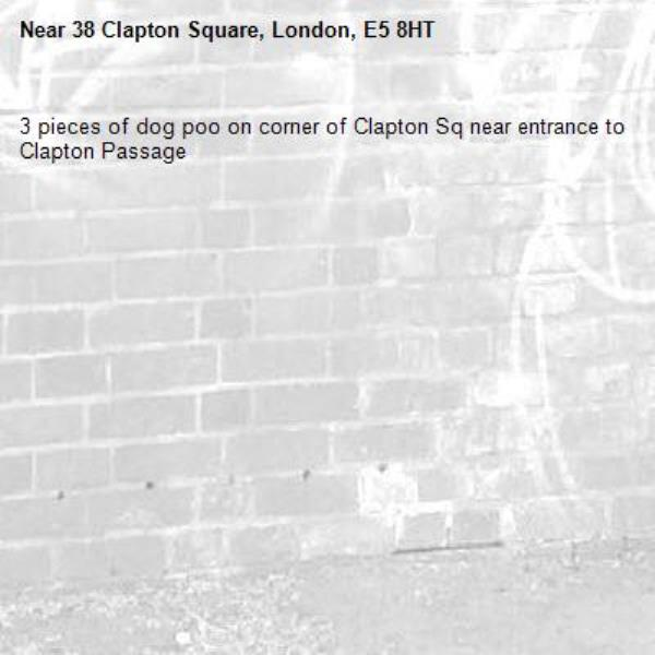 3 pieces of dog poo on corner of Clapton Sq near entrance to Clapton Passage-38 Clapton Square, London, E5 8HT