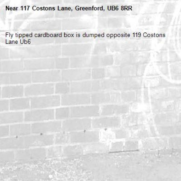 Fly tipped cardboard box is dumped opposite 119 Costons Lane Ub6 -117 Costons Lane, Greenford, UB6 8RR
