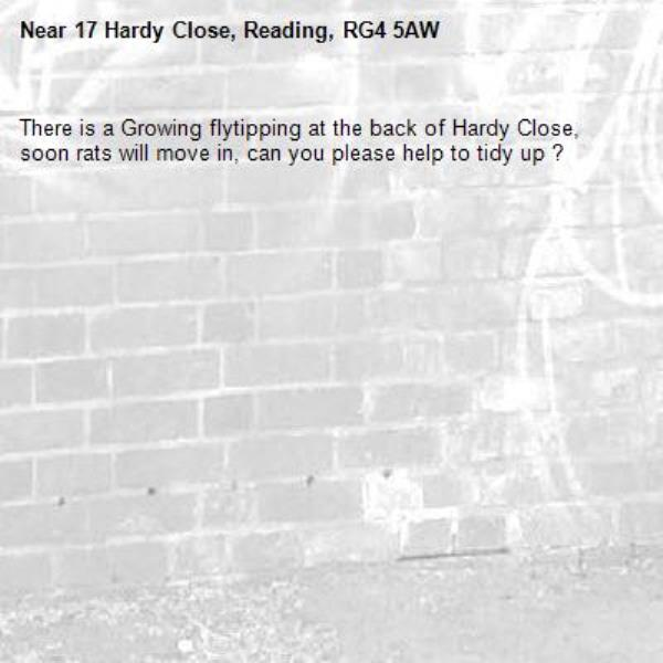 There is a Growing flytipping at the back of Hardy Close, soon rats will move in, can you please help to tidy up ? -17 Hardy Close, Reading, RG4 5AW