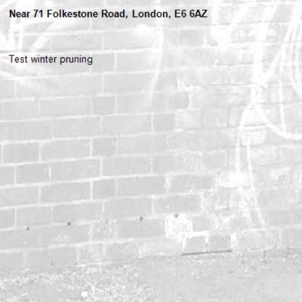 Test winter pruning-71 Folkestone Road, London, E6 6AZ