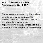 These trees are owned by Hampshire County Council so you need to contact them on 0300 555 1388 or report on their website via https://www.hants.gov.uk/transport/roadmaintenance/roadproblems/treehedge -37 Brookhouse Road, Farnborough, GU14 0DP