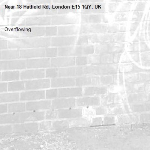 Overflowing -18 Hatfield Rd, London E15 1QY, UK