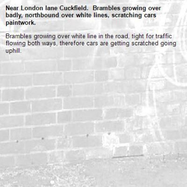 Brambles growing over white line in the road, tight for traffic flowing both ways, therefore cars are getting scratched going uphill.-London lane Cuckfield.  Brambles growing over badly, northbound over white lines, scratching cars paintwork.