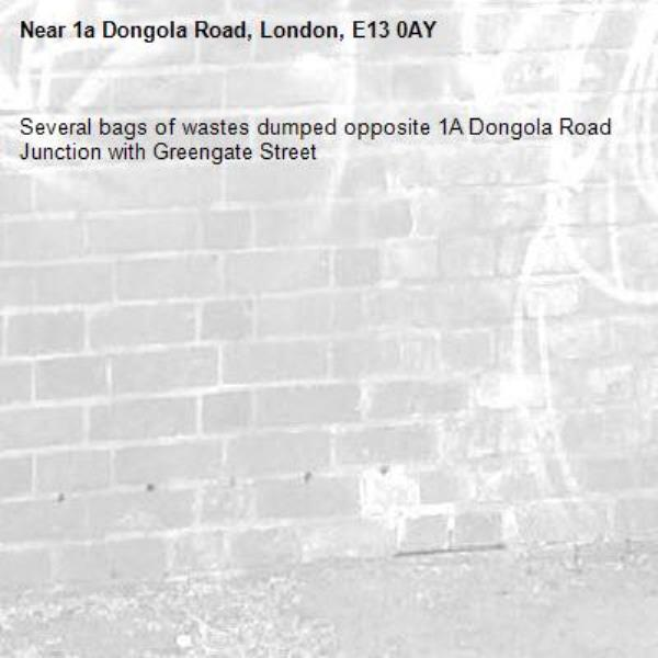 Several bags of wastes dumped opposite 1A Dongola Road Junction with Greengate Street -1a Dongola Road, London, E13 0AY