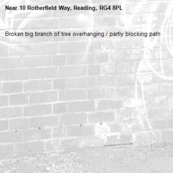 Broken big branch of tree overhanging / partly blocking path-10 Rotherfield Way, Reading, RG4 8PL