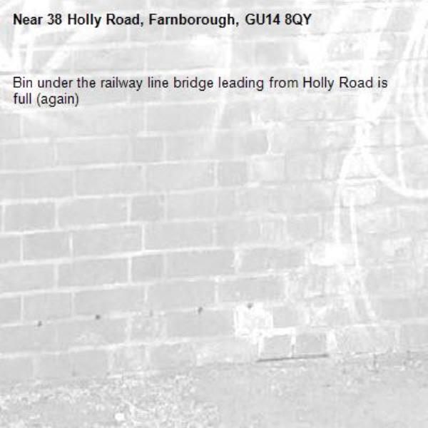 Bin under the railway line bridge leading from Holly Road is full (again)-38 Holly Road, Farnborough, GU14 8QY