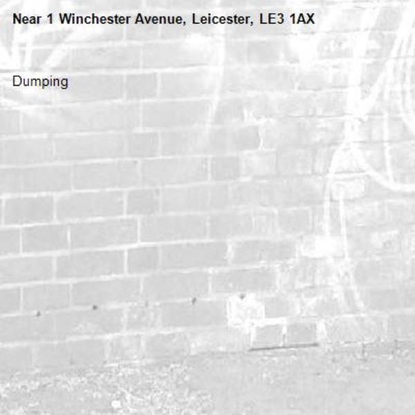 Dumping -1 Winchester Avenue, Leicester, LE3 1AX