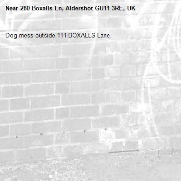 Dog mess outside 111 BOXALLS Lane-280 Boxalls Ln, Aldershot GU11 3RE, UK