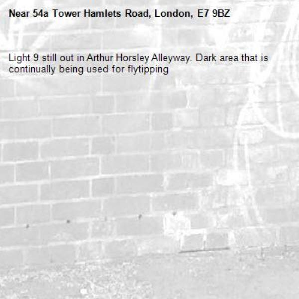 Light 9 still out in Arthur Horsley Alleyway. Dark area that is continually being used for flytipping -54a Tower Hamlets Road, London, E7 9BZ